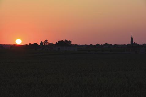sunset24
